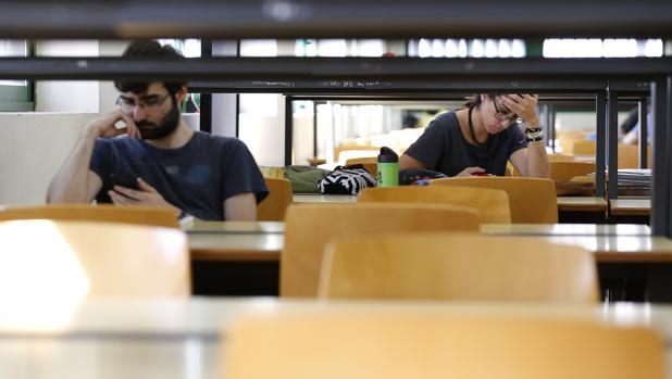 ¿Cuándo es más provechoso: estudiar de día o de noche?
