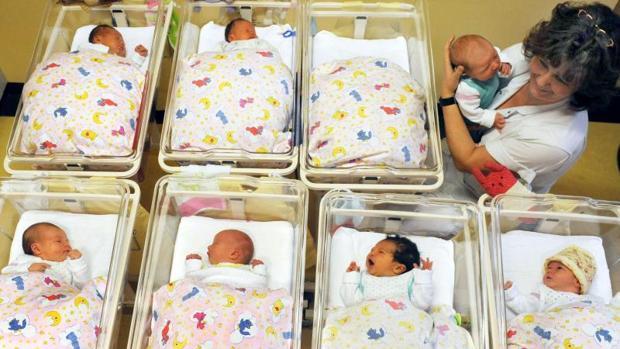 El mayor incremento de natalidad se dio en los estados federados del este de Alemania