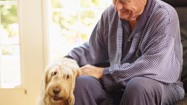 Mascotas:  Animales de compañía: necesidad o artículo de lujo