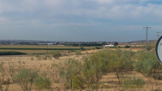 La zona de los Cerros, donde se celebró el pasado 28 de octubre una fiesta de Halloween