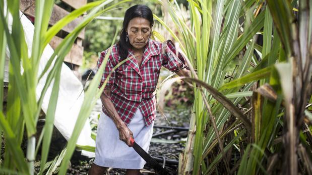 Teresa, 61 años (Colombia)