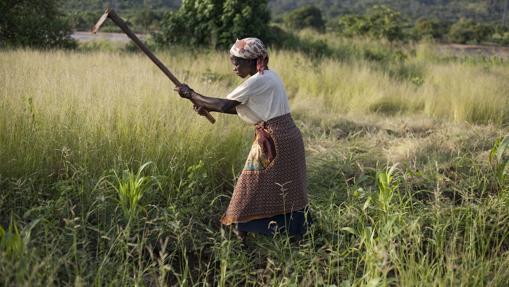 Así se envejece en América Latina, África y Asia