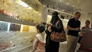 Holanda da el primer paso para prohibir el burka y el niqab en algunos lugares públicos