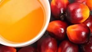 Estas son las alternativas al dañino aceite de palma