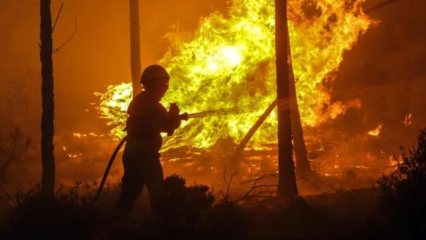 Cómo escapar de un incendio forestal