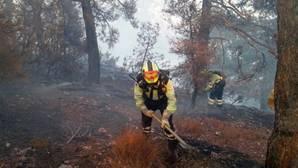 Fotografía facilitada por la Junta de Castilla La Mancha de varios bomberos en labores de extinción del incenio forestal declarado días atras en el municipio de Yeste, (Albacete) y que ha quemado ya 3.200 hectáreas de terreno