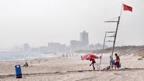 Bandera roja en la playa de Saler (Valencia)