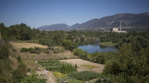 La agricultura se ha seguido desarrollando en el entorno de la central