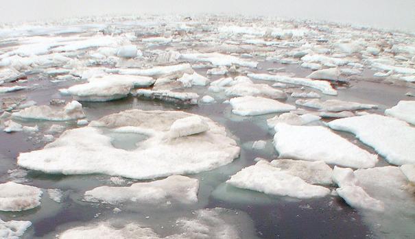 La velocidad del deshielo ha obligado a acelerar los planes sobre la explotación de reservas en el Ártico