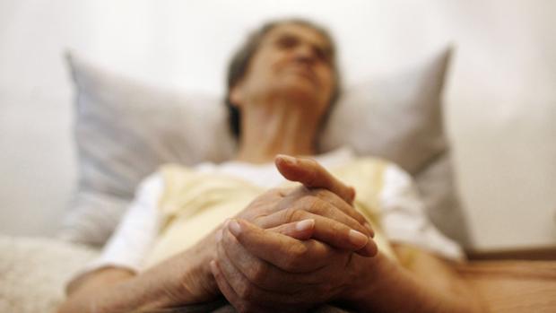 Investigadores identifican una molécula que podría ayudar en el tratamiento del mal de Alzheimer
