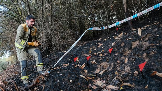 El fuego ha causado la muerte de 40 personas en Portugal y 4 en Galicia