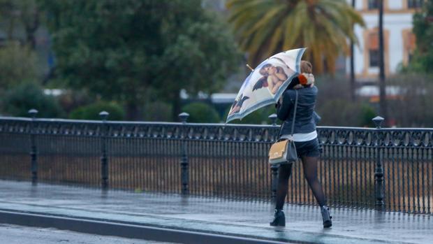 La borrasca Gisele dejó fuertes vientos en Sevilla