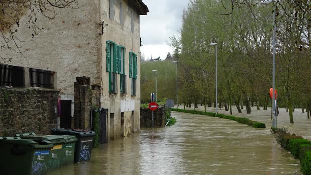 El río Arga se desborda en Pamplona