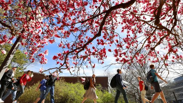 Estudiantes de la Universidad de Iowa caminan por el campus