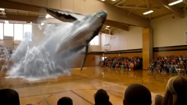 Captura de pantalla del holograma de una ballena en un gimnasio