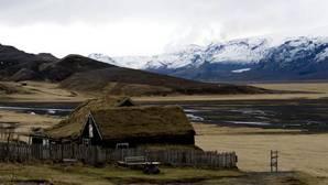 Por qué no hay hormigas en Islandia: el motivo verdadero