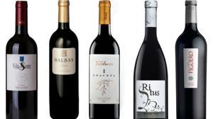 Diez de los mejores vinos de la Ribera del Duero en Burgos