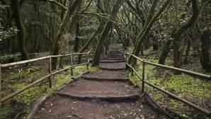 Descubre los 15 Parques Nacionales de España