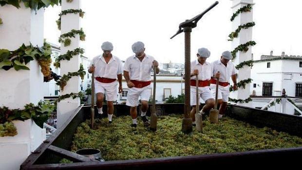 Imagen de la pisa de la uva en las Fiestas de la Vendimia