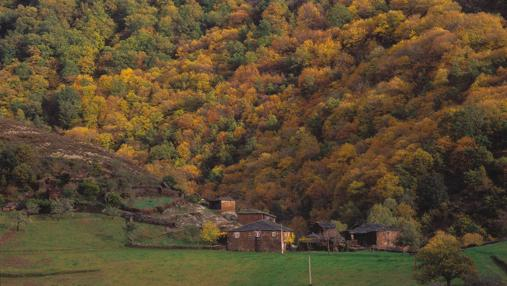 Colores de otoño en Santa Eulalia de Oscos