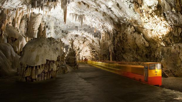Postojna, la cueva donde viven las «crías de dragón»
