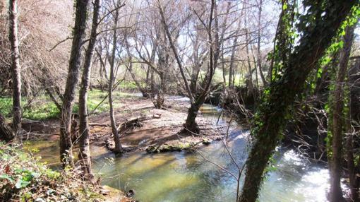 Parque Natural de la Sierra Norte. Fuente: andalucia.org