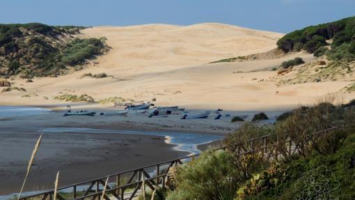 El paseo permite ver la duna y pasar junto a las Ruinas de Baelo Claudia