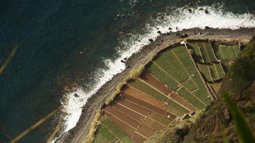 A los pies del Cabo Girão, una «fajã» (terreno fértil nacido a partir de un corrimiento de tierra)
