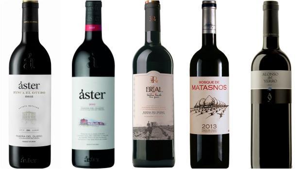 De izquierda a derecha, Áster Finca el Otero 2012, Áster Crianza 2012, Erial TF 2013, Bosque de Matasnos 2013 y Alonso del Yerro 2012