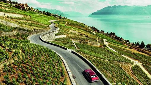 Región vitivinícola de Lavaux