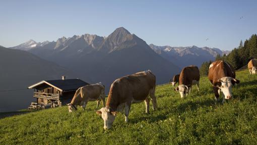 Idílica postal de las granjas del Tirol