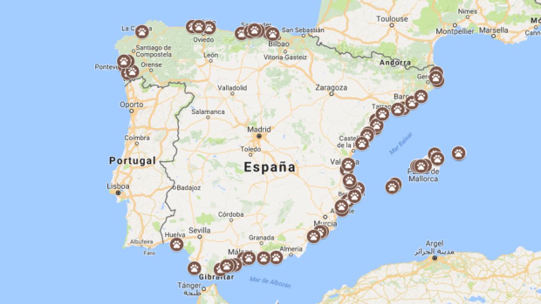 mapa de las playas de españa donde disfrutar con tu perro