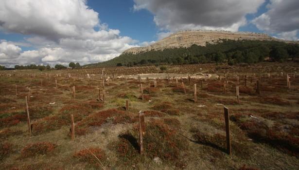 Estado actual del Cementerio de Sad Hill, en Burgos