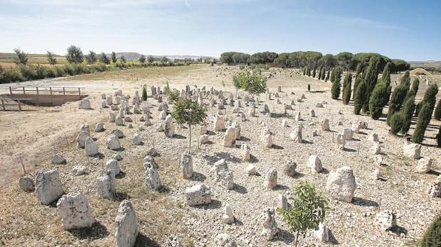 Yacimiento arqueológico de Pintia